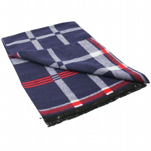 Bamboo Scarf - Blue & Red Check